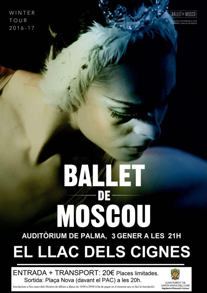 Ballet de Moscou. El llac dels cignes.